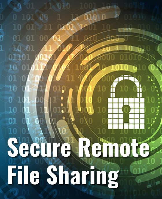 secure remote file sharing services in maryland virginia washington dc