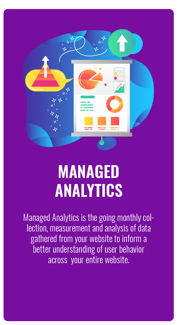 Managed Web Site Analytics Services in Maryland Virginia and Washington DC