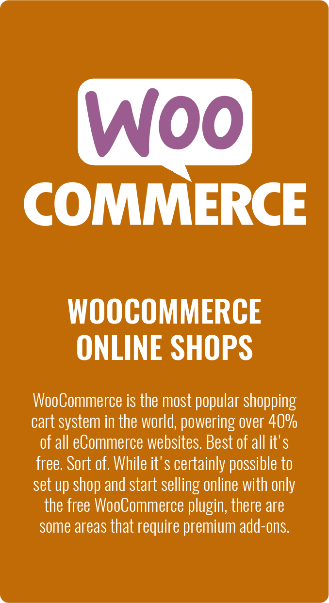 WordPress eCommerce WooCommerce Online Shop Solutions in Maryland Virginia and Washington DC