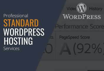 Standard WordPress Website Hosting Services in Baltimore Beltsville Rockvile Silver Spring Maryland Virginia Washington DC