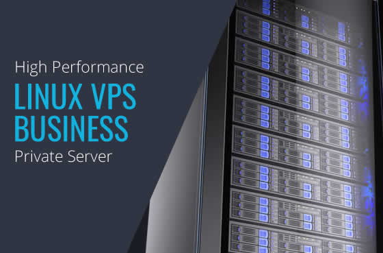 Linux VPS Business High Performance Virtual Private Servers in Maryland Virginia Washington DC